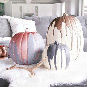 pumpkin-1-square